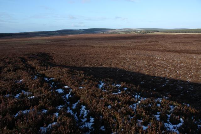 Moorland East of Bogeney