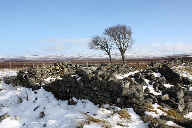 Auchlochan ruins in winter