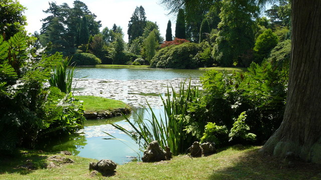 Ten Foot Pond, Sheffield Park