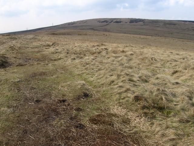 Hollingworthhall Moor