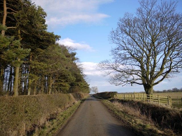 Minor road south-east of Black Heddon