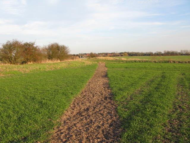 Footpath near Sarre