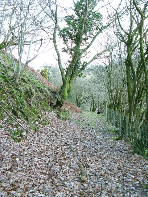 Footpath towards Wenallt