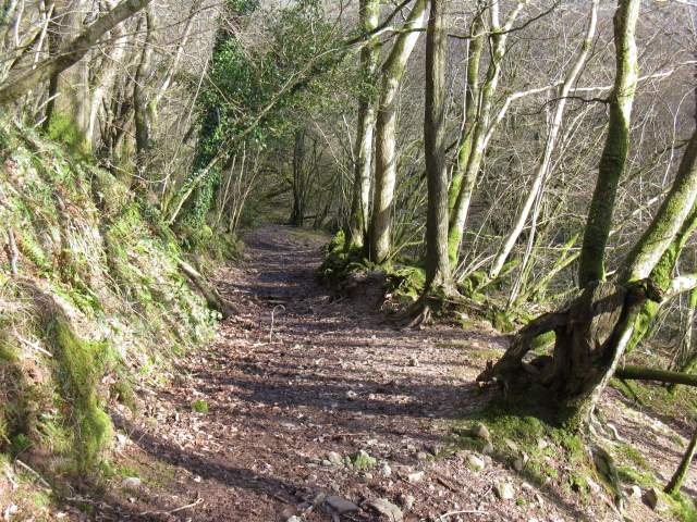 Bridleway descends toward Sawdde Fechan valley floor