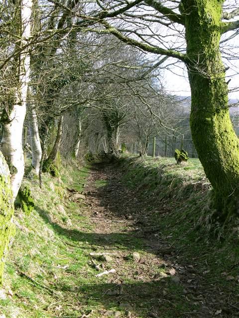 Bridleway through the fields above the Sawdde Fechan
