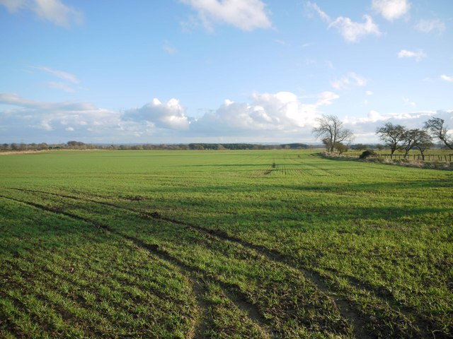 Arable land on footpath to Heugh