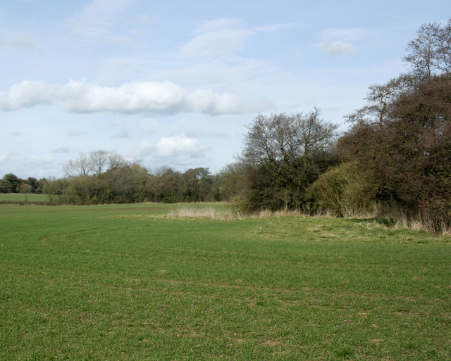 2009 : Looking north at Cloford