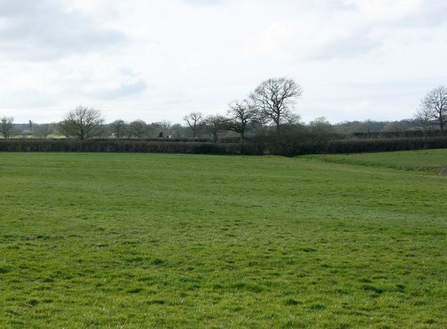 2009 : Looking west near  Alice Street Farm