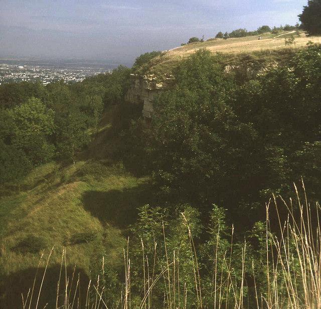 Cliff at Leckhampton Hill