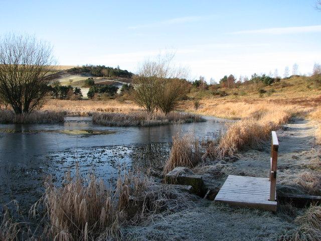 The Old Skating Pond Selkirk