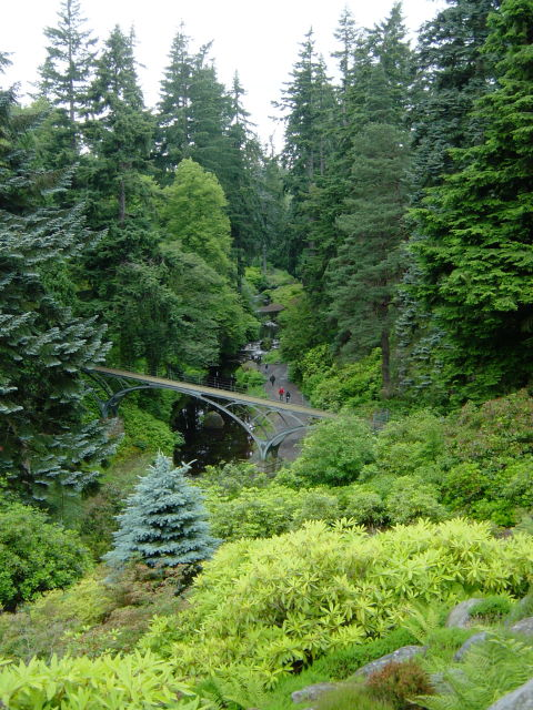 The Burn and footbridge, Cragside
