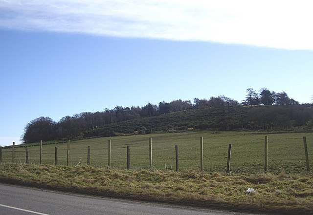 Scrubland on Hill of Keir