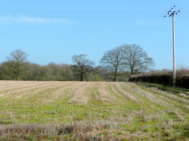 View to Grinnell's Wood
