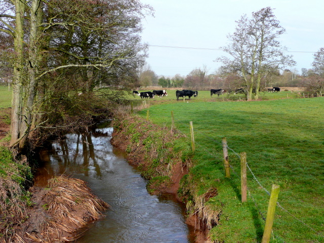 Ell Brook - upstream