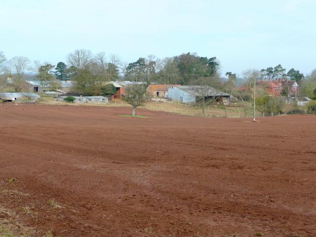 Conigree Court and Farm