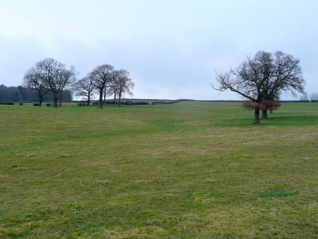 Pastoral hillside