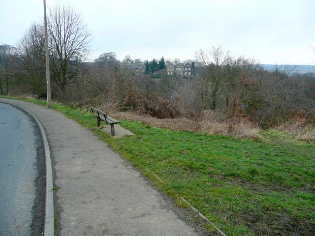 Bench by Ballfield Lane