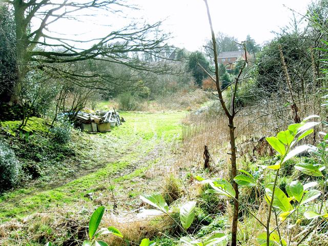 The old quarry, Quarry Lane, Ketley