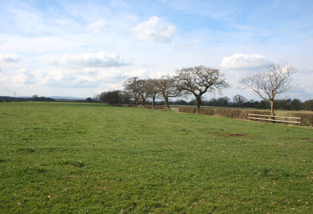Pasture near High Farm, Minshull Vernon