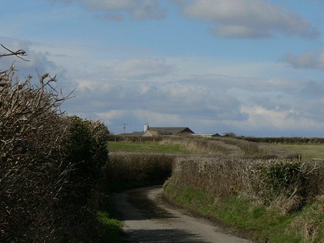 Country Lane, Frampton near Llantwit Major.