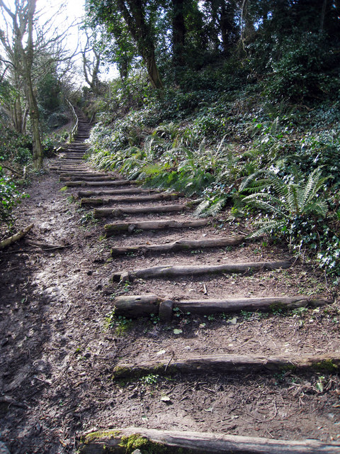Steps to Fairhurst Glen