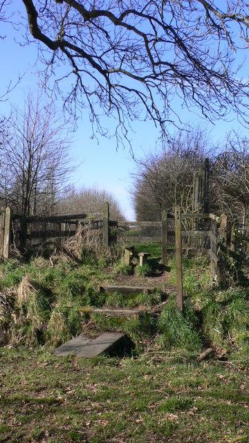 Footpath leaves road by Wardley Farm