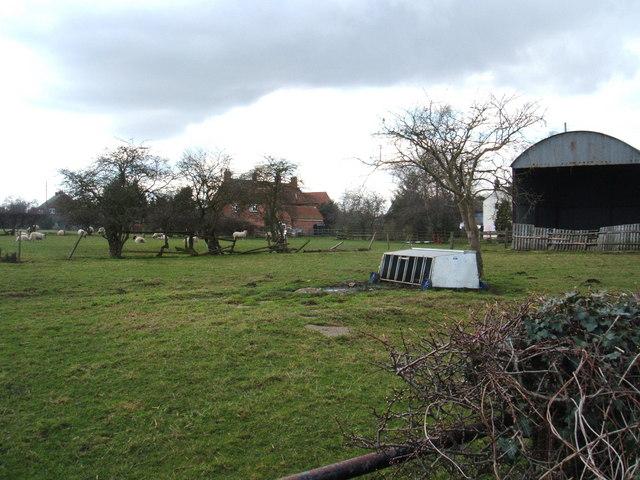 Field at Shelford