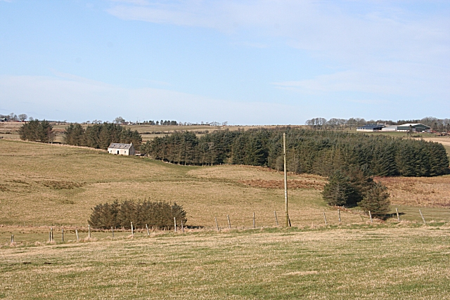 Burns Croft