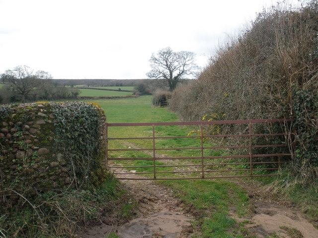 Fields, near Kingston