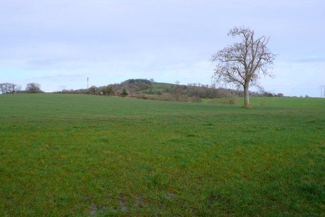 Countryside near Beer Hackett