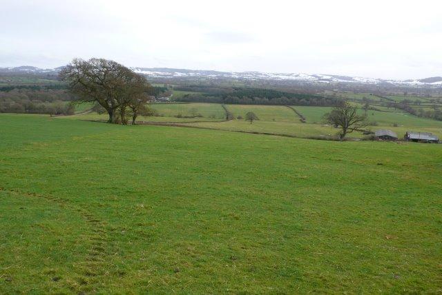 Knighton Hill