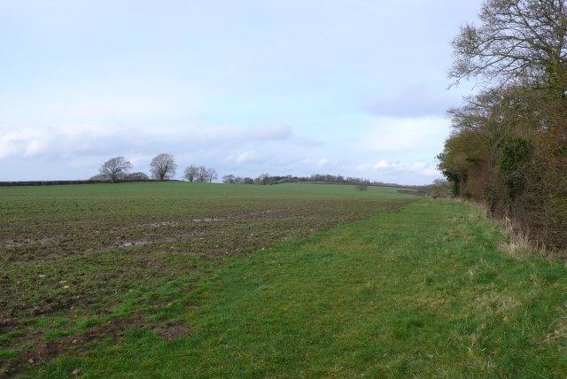 Fields on Knighton Hill
