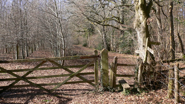 Footpath between Wardley Farm and  Mill Farm at Milland