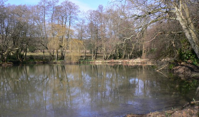 Millpond near Milland