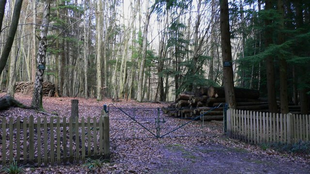 Private entrance to Jungle Wood
