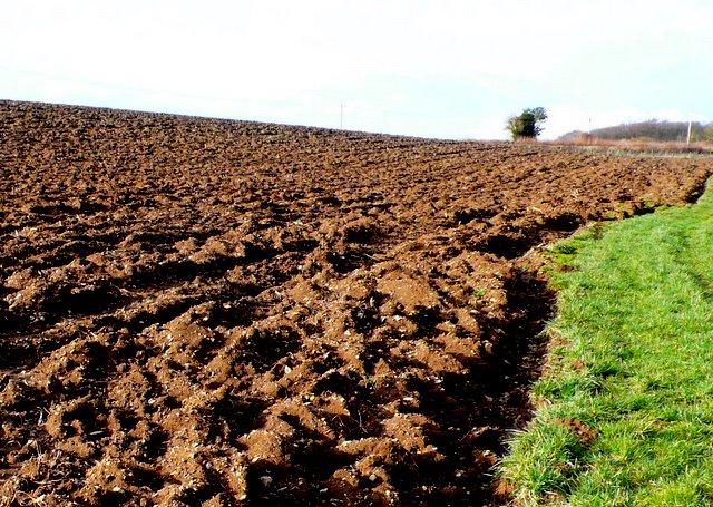 Ploughed Field, Lillington