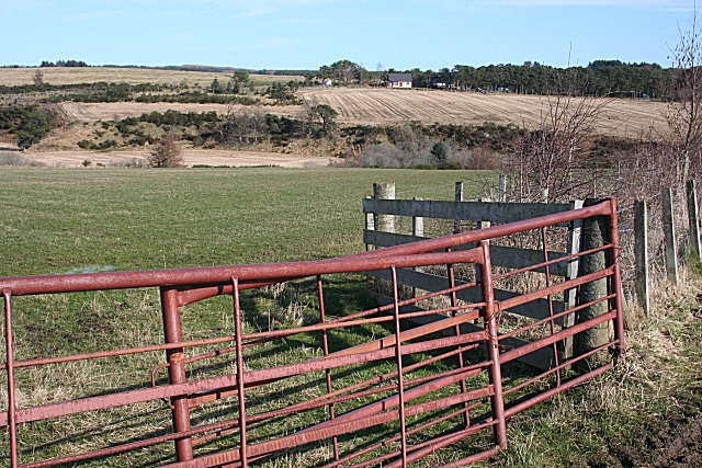 Looking Towards Roehill