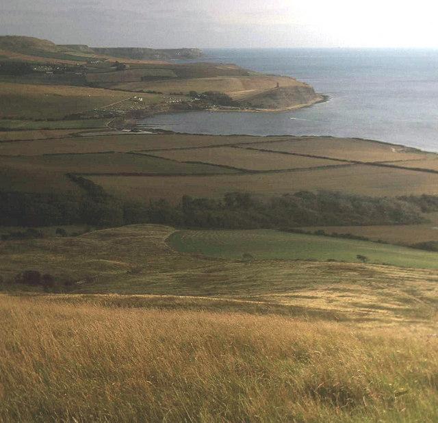 Grassland below Tyneham Cap