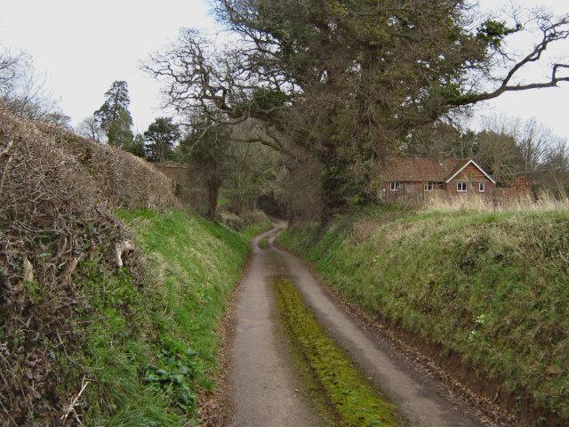 Bower Lane, Durleigh