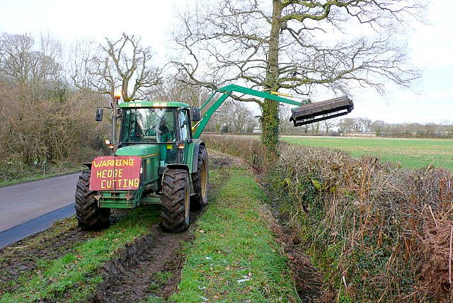Hedge Cutting at The Holm Bushes.
