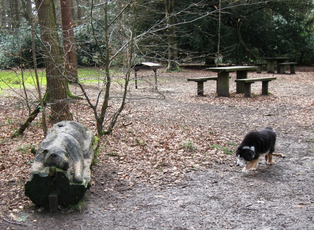 Picnic Area with Dog Sculpture, Wendover Woods.