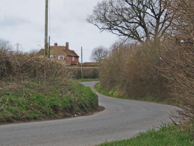 Rhode Lane, near Bridgwater