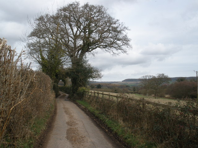 Minor road to Kingston, Devon