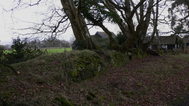 Boundary walled bank on top of Dunner Hill
