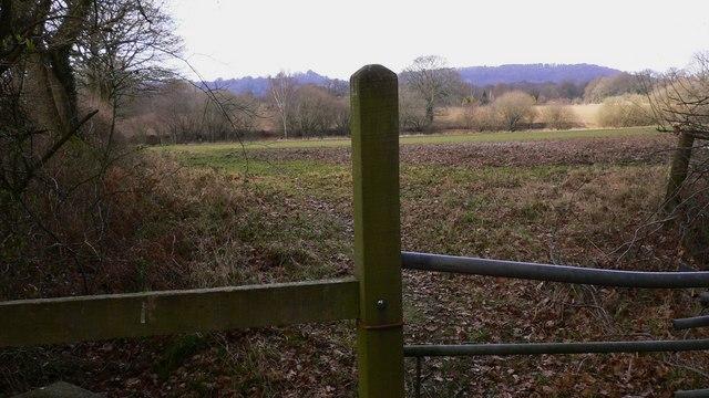 Field north of Lambourne Copse