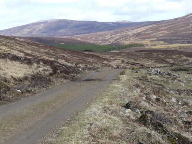 The track to Craggie