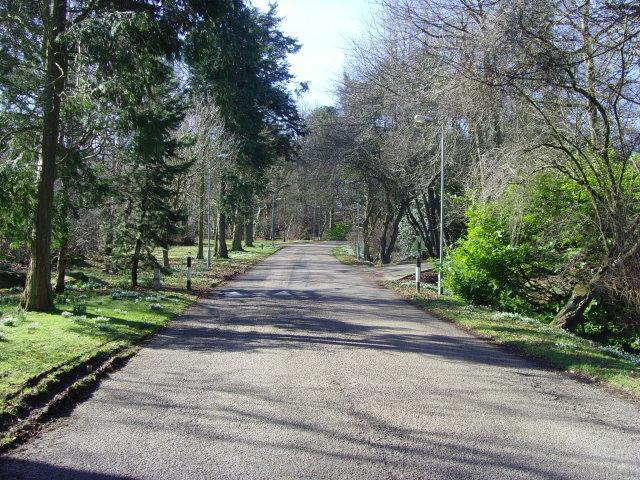 Craibstone Estate - Main Drive
