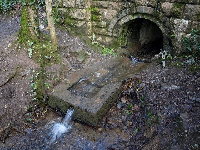 Culvert above Marsh Combe