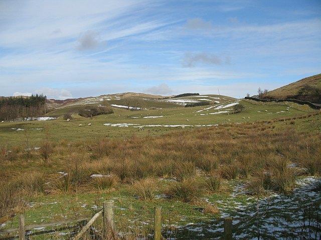 Wet pasture , Hutton Park