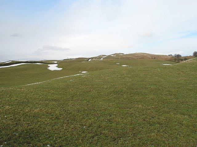 Grassland, Hay Fell